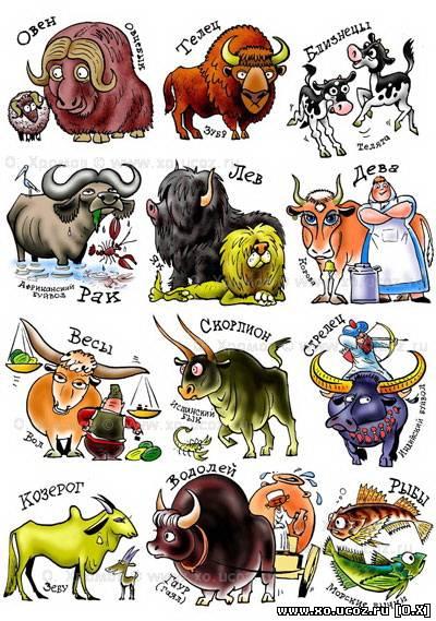 Женщи  лев в год свиньи гороскоп